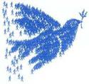 Friedenstaube, Rostocker Friedensbündnis